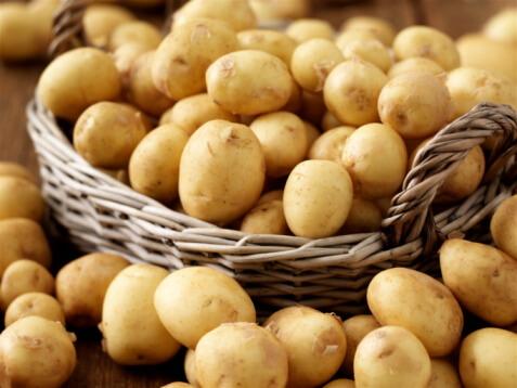 Пазете картофената реколта от болести