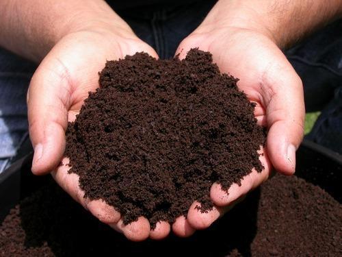 Можем ли сами да определим киселинността на почвата