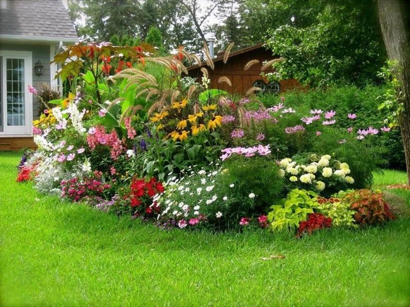 Стъпка по стъпка към градината на вашите мечти