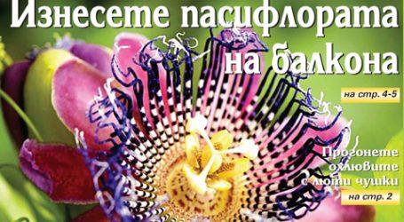 Вестник за градината, бр. 29