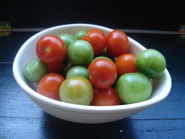 Запазете си пресни домати до късна есен