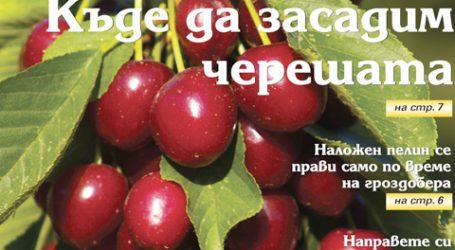 Вестник за градината, бр. 38