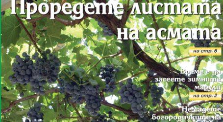 Вестник за градината, бр. 36