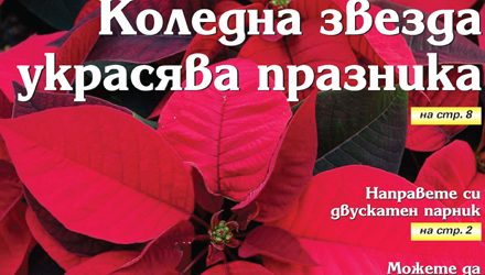 Вестник за градината, бр. 50
