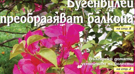 Вестник за градината, бр. 4