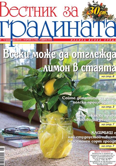 Вестник за градината, бр. 6