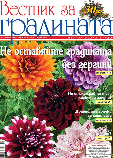 Вестник за градината, бр. 10