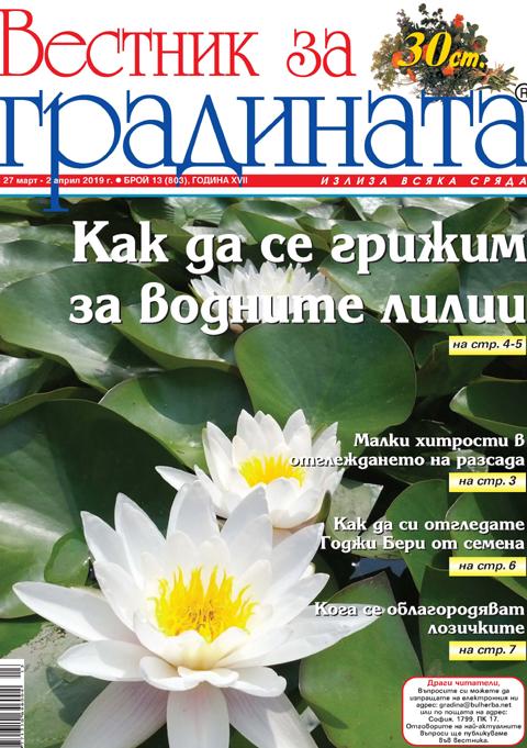 Вестник за градината, бр. 13