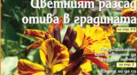 Вестник за градината, бр. 20