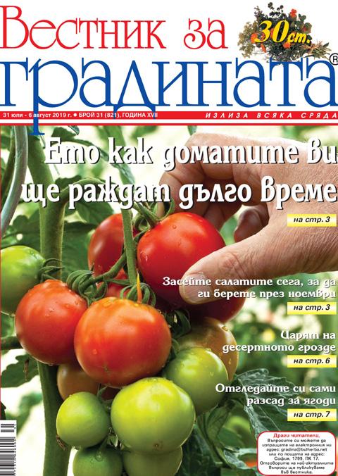 Вестник за градината, бр. 31