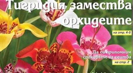 Вестник за градината, бр. 1
