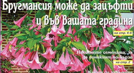 Вестник за градината, бр. 3