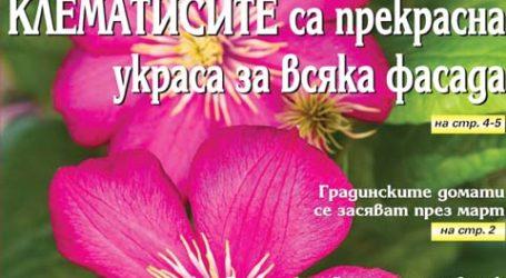 Вестник за градината, бр. 9