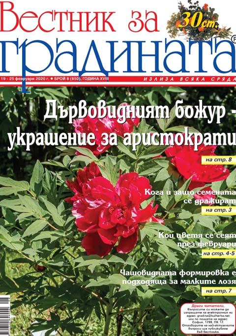 Вестник за градината, бр. 8