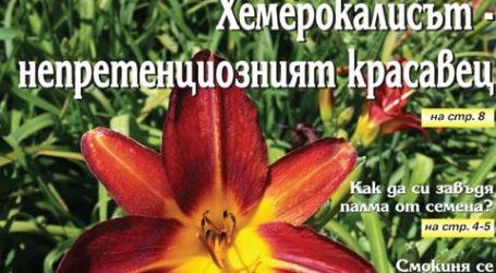 Вестник за градината, бр. 18
