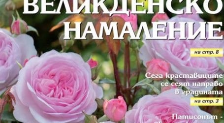 Вестник за градината, бр. 16