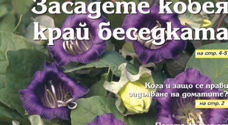 Вестник за градината, бр. 22