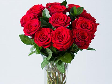 Запазете си свежи рози за зимата