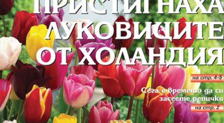 Вестник за градината, бр. 35