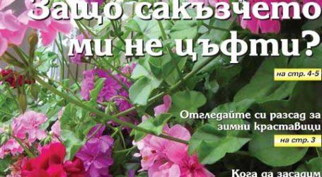 Вестник за градината, бр. 43