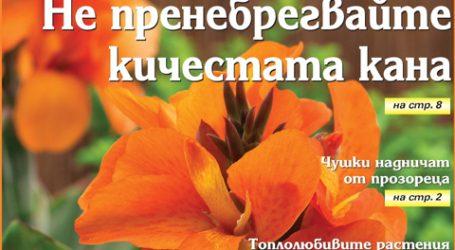 Вестник за градината, бр. 46