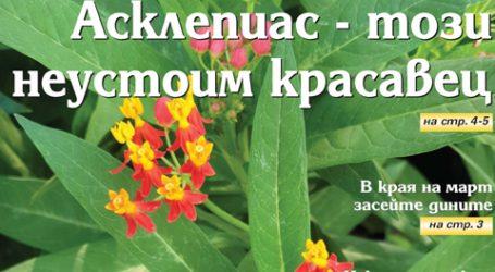 Вестник за градината, бр. 12