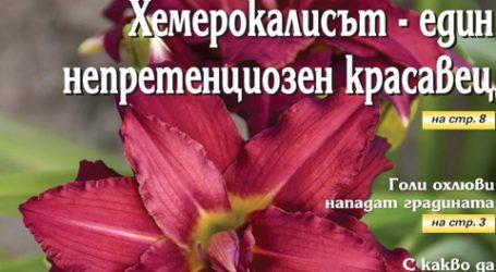 Вестник за градината, бр. 14