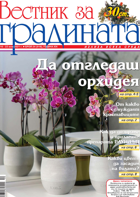 Вестник за градината, бр. 24