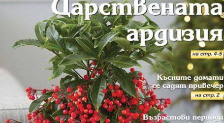 Вестник за градината, бр. 26