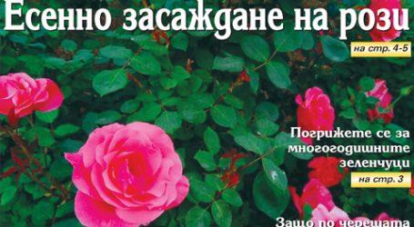 Вестник за градината, бр. 40